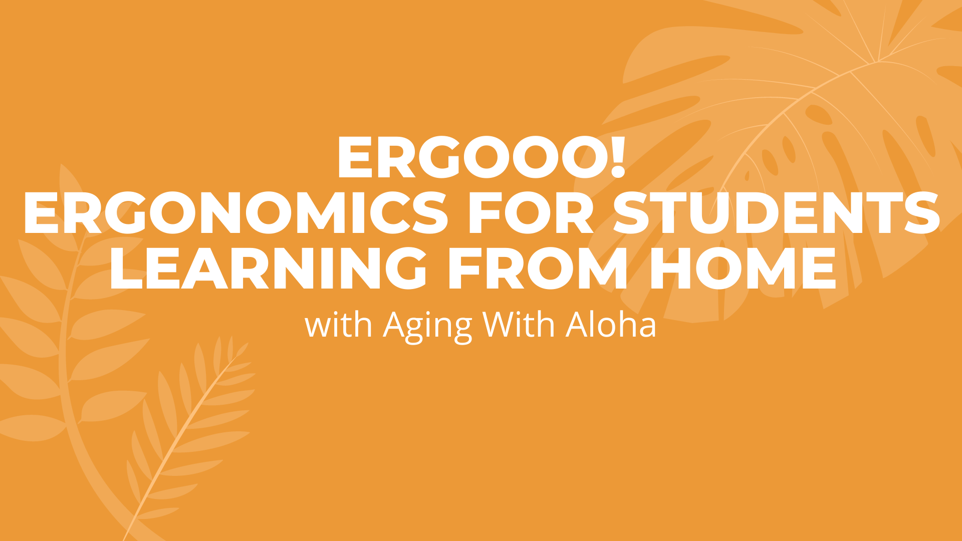 ER-GOOO Ergonomics for Students Learning from Home