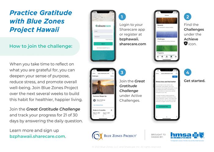Great Gratitude Challenge Instructions