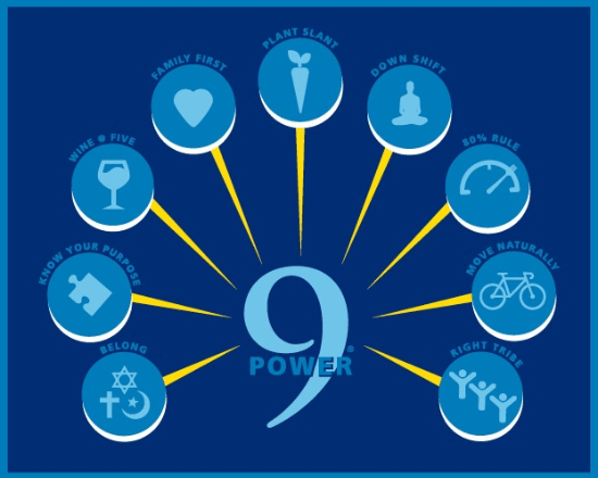 Power9webGraphic